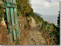 How to Hike the Cinque Terre Italy